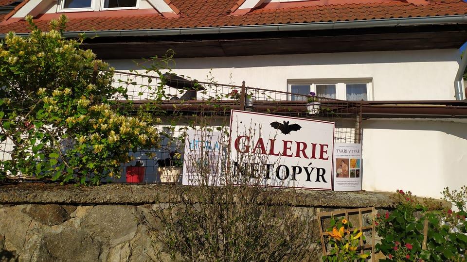 La Galerie Netopýr,  photo: Magdalena Hrozínková