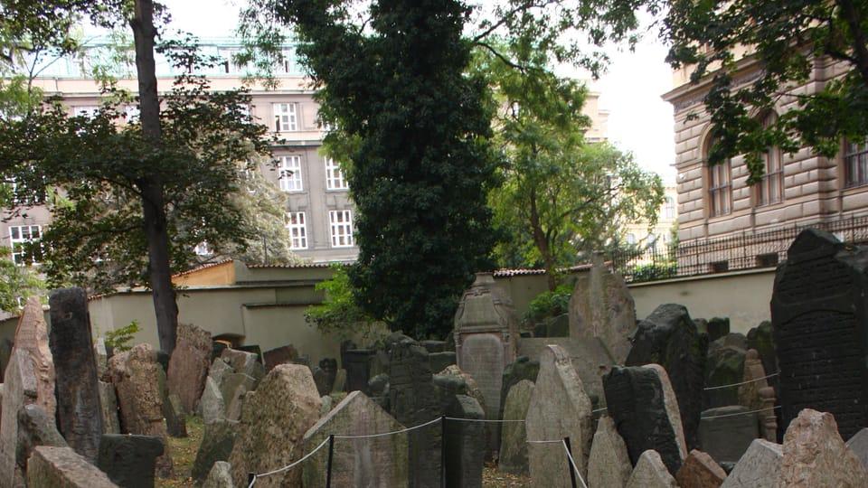 Le Vieux cimetière juif,  photo: Štěpánka Budková