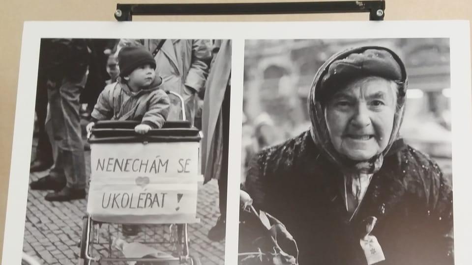 Photo de Lenka Hatašová