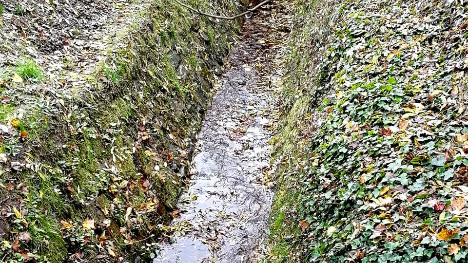 Le ruisseau de Brusnice,  photo: Štěpánka Budková