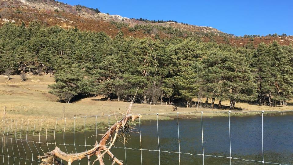 La Réserve biologique des Monts d'Azur,  photo: Kateřina Srbková